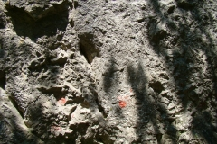 alpinism-cheile-turzii8