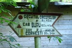 trasee-turistice-montane-cheile-turzii6