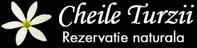 Rezervatia Naturala Cheile Turzii – Portal de prezentare Cheile Turzii